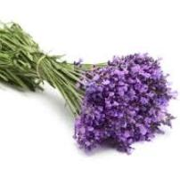 Image of Lavender Flower Posy